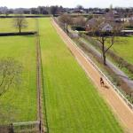 breeze-up-grass-gallops04