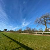 breeze-up-grass-gallops02