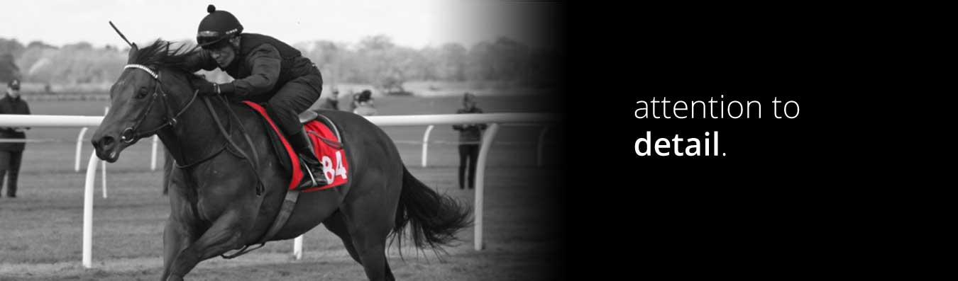 Breeze up horse racing