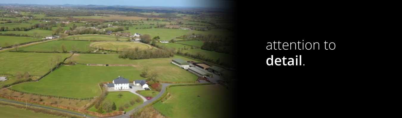 Gaybrook Lodge breeze up horses