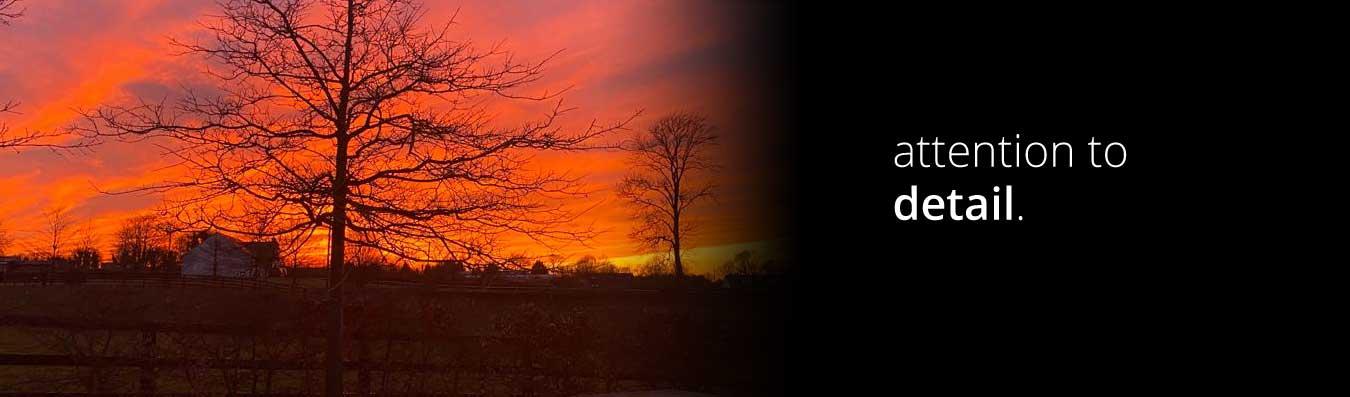 Gaybrook Lodge breeze up horses sunset
