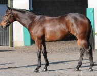 craven-lot55-jeremy
